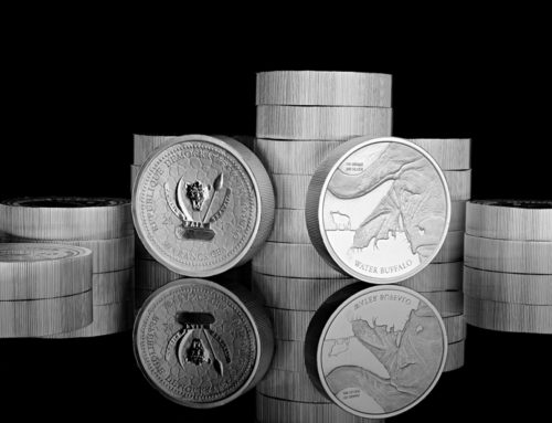 I want to buy silver in South Africa. Which product should I purchase?