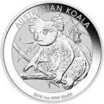 koala 18